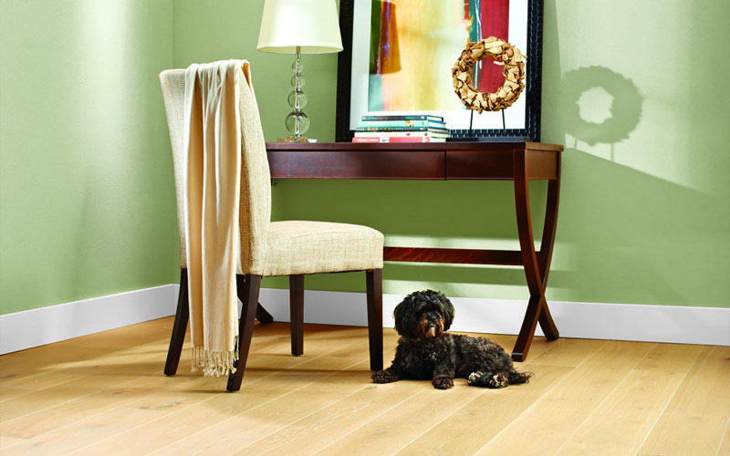 Pets Amp Hardwood Flooring A Good Combination